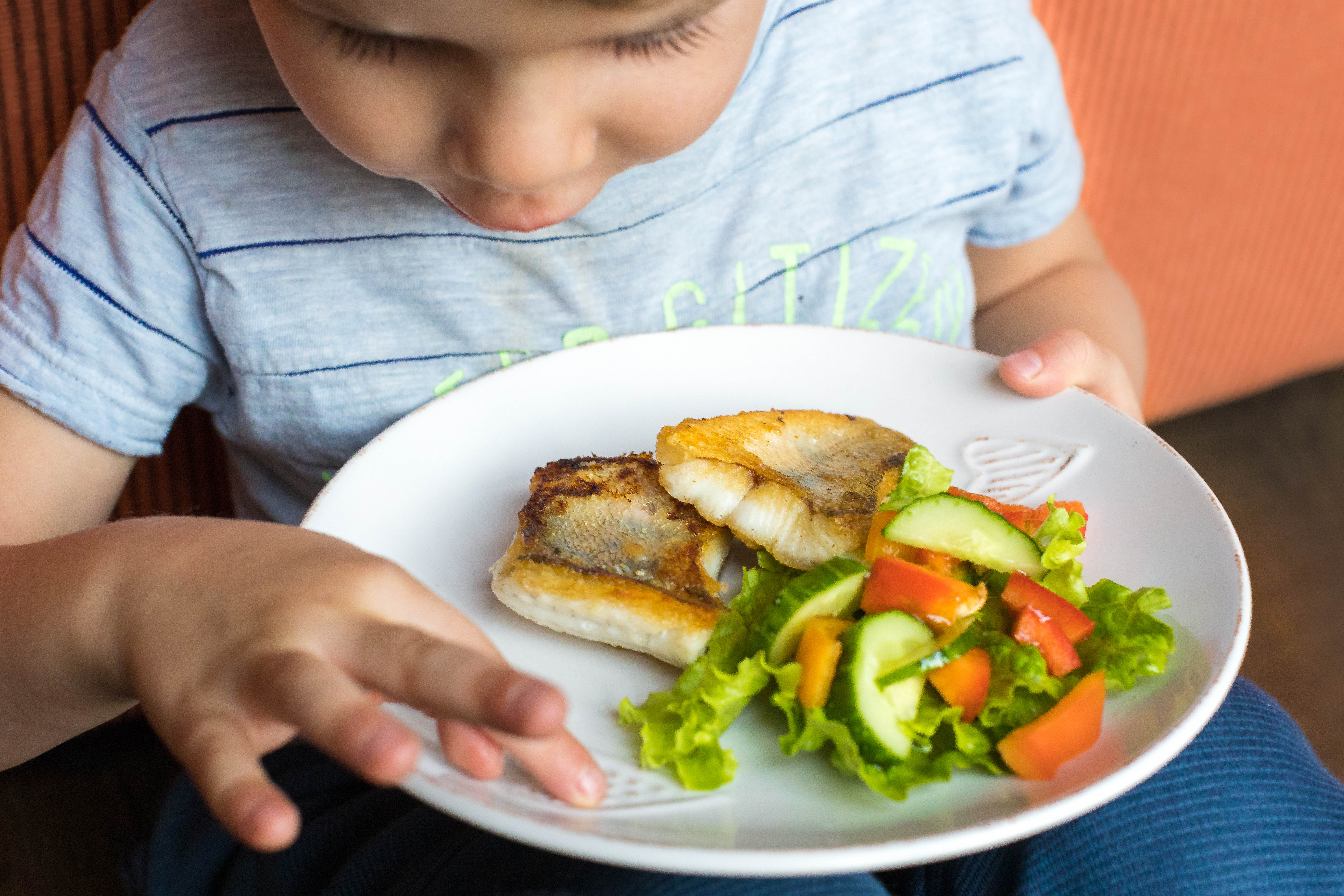 Butter cooked pike perch fillet with fresh salad